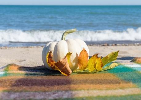 Coastal's Guide to Flavorful Fall Fun